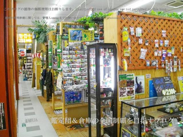 ドッポ本宮店,開放倉庫本宮店11-6