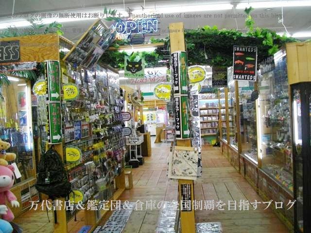 ドッポ本宮店,開放倉庫本宮店11-10