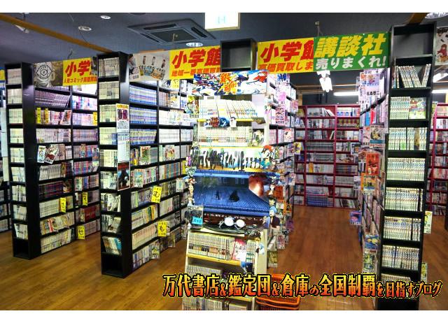 ガラクタ鑑定団栃木店,garakuta鑑定団栃木店15-46