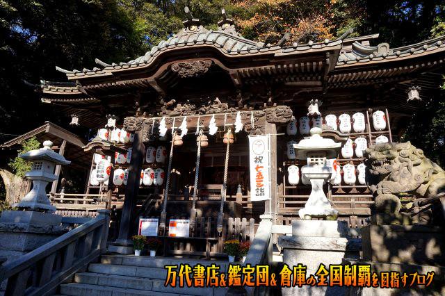 夢大陸日立南店15-7